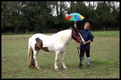 forum rencontre cheval